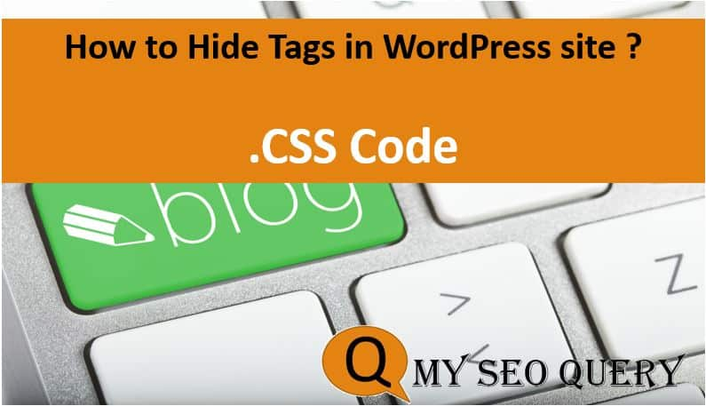 how to hide tags in wordpress website